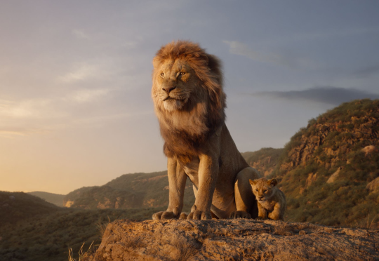 [BoxOffice] Met recht is The Lion King de Koning van de Jungle - Week 29